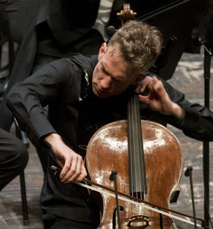 moser live cello