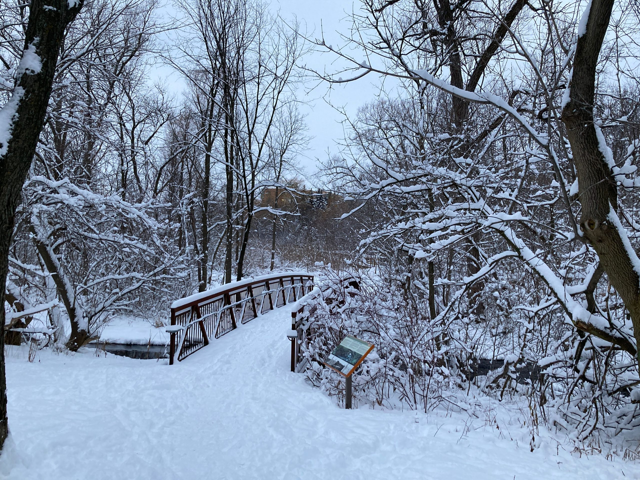 snow, bridge, winter, scene